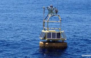 Azores buoy